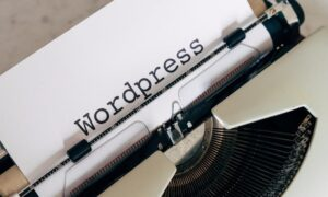 How do WordPress plugins work?